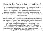 how is the convention monitored