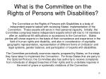 what is the committee on the rights of persons with disabilities