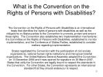 what is the convention on the rights of persons with disabilities