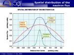spatial distribution of the neutron flux