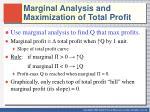 marginal analysis and maximization of total profit