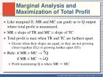 marginal analysis and maximization of total profit1