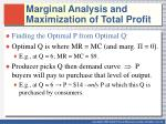 marginal analysis and maximization of total profit2