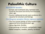 paleolithic culture