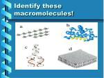 identify these macromolecules