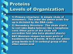 proteins levels of organization