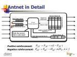 antnet in detail