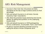 aig risk management