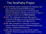the terapaths project