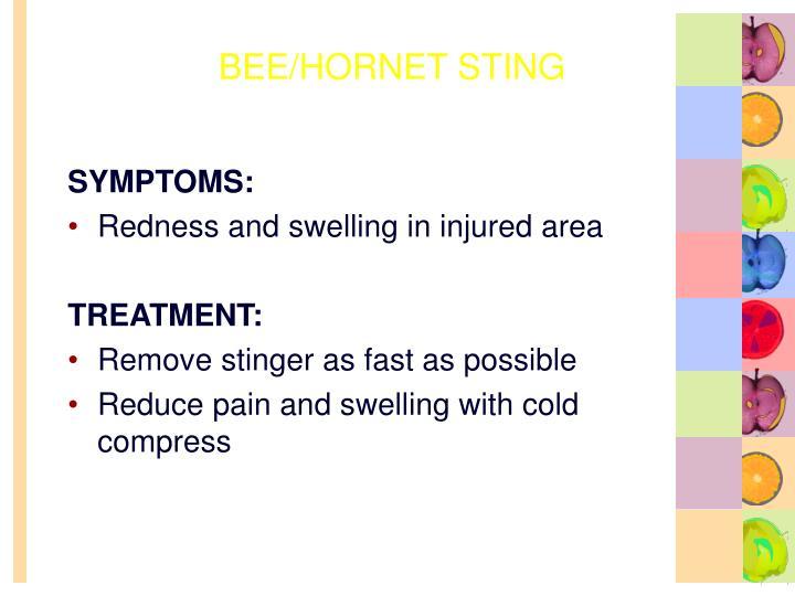 BEE/HORNET STING