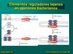 elementos reguladores lejanos en operones bacterianos