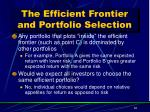 the efficient frontier and portfolio selection