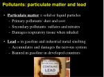 pollutants particulate matter and lead