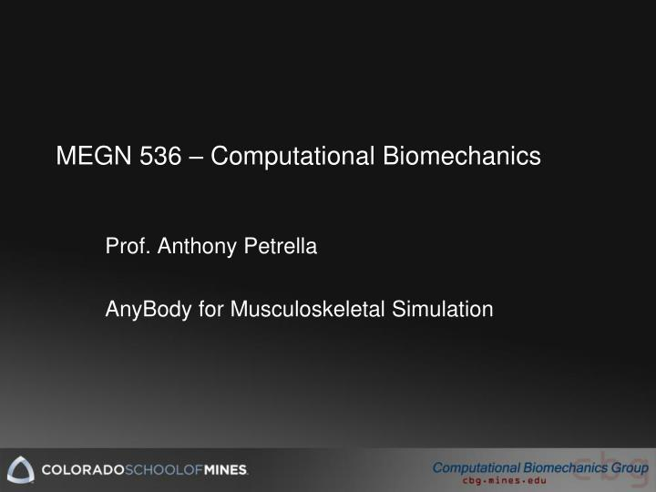 megn 536 computational biomechanics n.