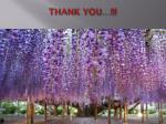 thank you visit us www malbery com