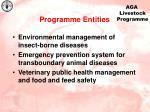 programme entities1