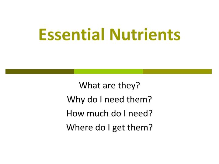 essential nutrients n.