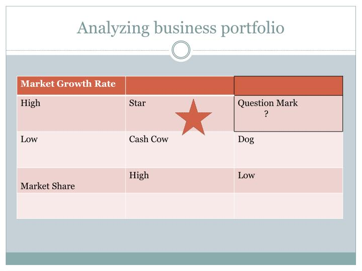 Analyzing business portfolio
