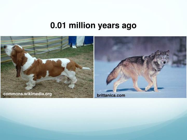 0.01 million years ago