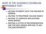 what is the guidance counselor responsible for