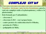 complejo cit b f
