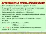 eficiencia a nivel molecular