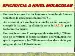 eficiencia a nivel molecular1