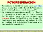 fotorespiracion1