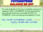 fotosintesis balance de atp