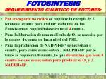 fotosintesis requerimiento cuantico de fotones