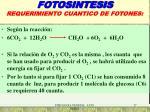 fotosintesis requerimiento cuantico de fotones1