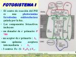 fotosistema i
