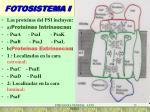 fotosistema i1