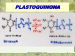 plastoquinona