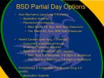 bsd partial day options