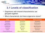 3 1 levels of classification