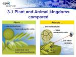 3 1 plant and animal kingdoms compared