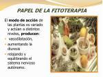papel de la fitoterapia1