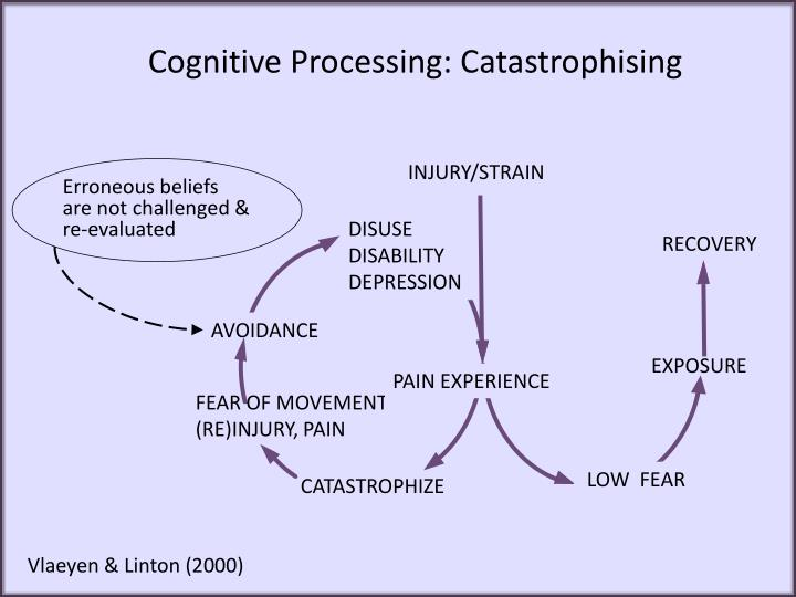 Cognitive Processing: