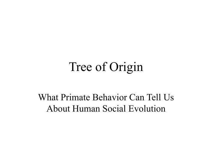 tree of origin n.