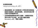 antigen presenting cell apc