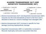 alanine transaminase alt and aspartate transaminase ast