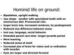 hominid life on ground