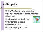 anthropoids2