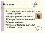 hominins1
