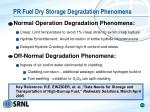 pr fuel dry storage degradation phenomena