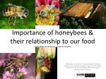 importance of honeybees their relationship to our food draft slides for educators to edit as needed