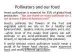 pollinators and our food