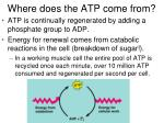 where does the atp come from