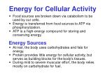 energy for cellular activity